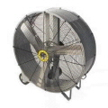Rental store for 42  FLOOR FAN in Ashland KY